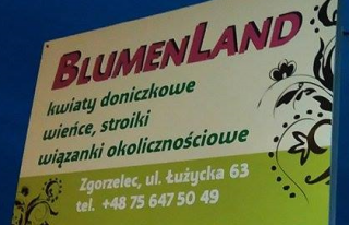 Blumenland Zgorzelec