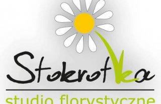 Studio Florystyczne Stokrotka Bytom