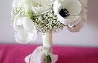Kwiaciarnia Zielony Raj Malbork
