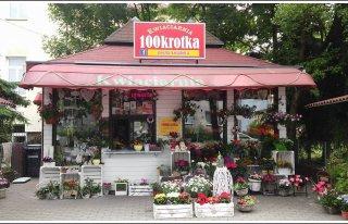 Kwiaciarnia 100krotka Gliwice