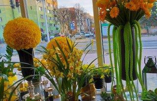 Kwiaciarnia Stokrotka Płock