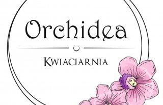 Kwiaciarnia Orchidea Starachowice Starachowice
