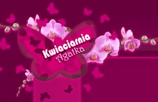 Kwiaciarnia Agatka Tarnobrzeg