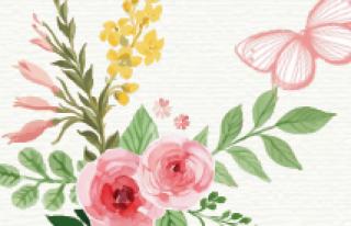 Kwiaciarnia Marty Lipno