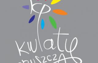 Kwiaty Pruszcza Pruszcz Gdański