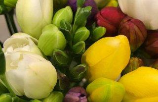 Kwiaciarnia  Aplauz Jaworzno