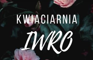 Kwiaciarnia IWRO Dąbrowa Górnicza