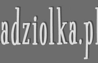 Marcin Kądziołka - Fotografia ślubna Kraków