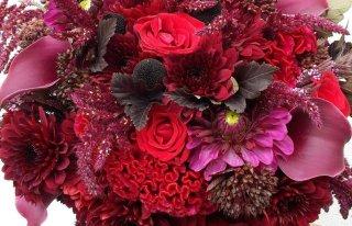 Molakinia Kwiaciarnia i Florystyka Artystyczna Głowno