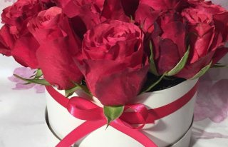 Kwiaciarnia Złota Róża Szczecinek