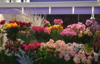 Kwiaciarnia FIORE, Koluszki, ul. 11 Listopada 32 Koluszki