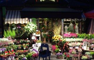Kwiaciarnia Dębnicka Kraków