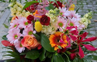Kwiaciarnia Carmen Krasnik