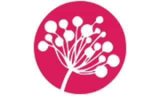 Amarant Kwiaty Grodzisk Mazowiecki
