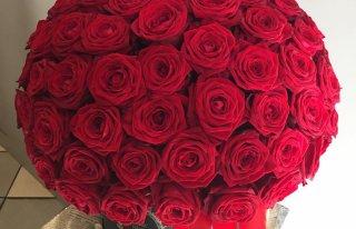 Kwiaciarnia Azalia Łukow