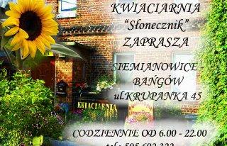 """Kwiaciarnia""""Słonecznik"""" Siemianowice-Bańgów Siemianowice Śląskie"""