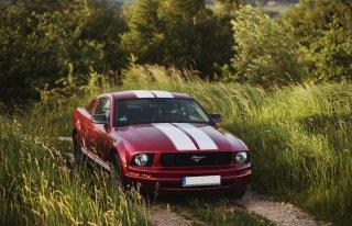 Czerwony Ford Mustang Gorlice