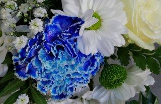 Kwiaciarnia Florabel w Smardzowie Oleśnica