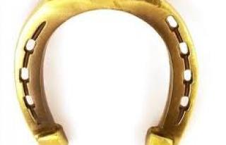 Dworek Pod Złotą Podkową Skoki