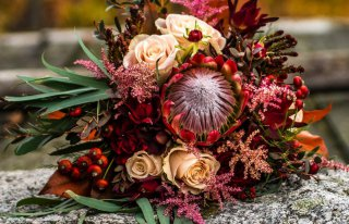 Kwiaciarnia Bajka Zielona Góra