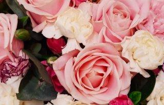 Kwiaciarnia ARS FLORA KONIN Konin