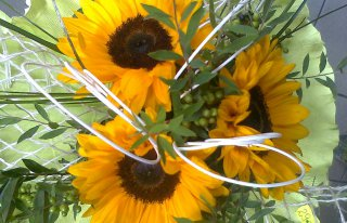 Kwiaciarnia FLORA Gdynia
