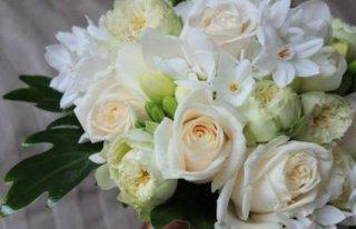 "Kwiaciarnia ""Alicja"" Siedlce Siedlce"